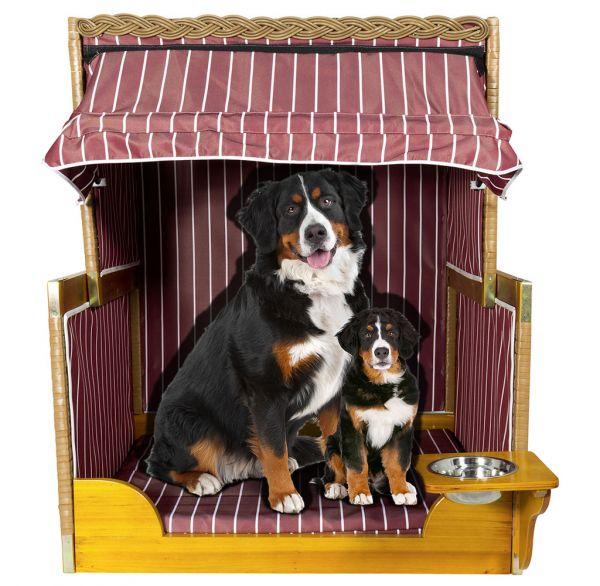 37885 Luxus Hundes Strandkorb Hundehütte